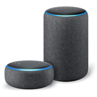 Alexa Voice Integration for iAquaLink