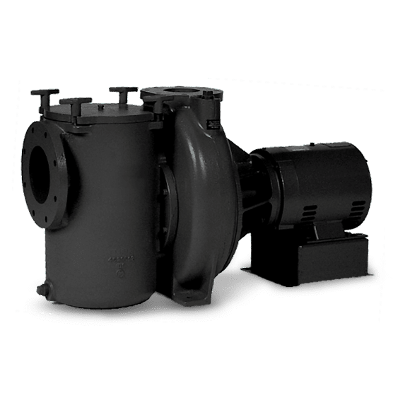 Jandy Commercial Pool Pump
